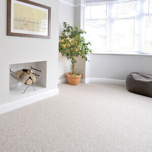 Carpet floor finishes